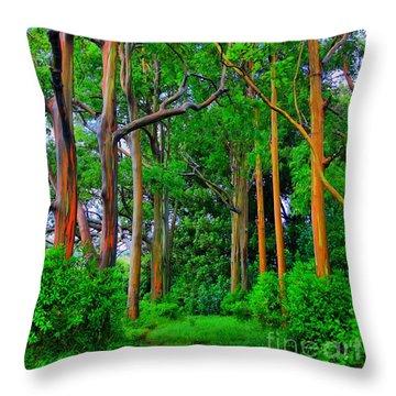 Amazing Rainbow Eucalyptus Throw Pillow by DJ Florek
