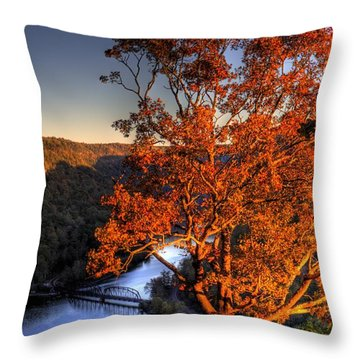 Amazing Tree At Overlook Throw Pillow by Jonny D