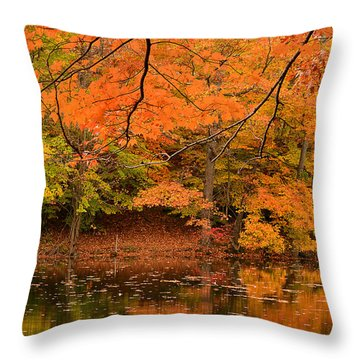 Amber Afternoon Throw Pillow by Lourry Legarde