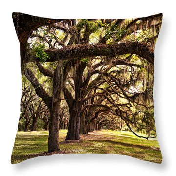 Amber Archway Throw Pillow