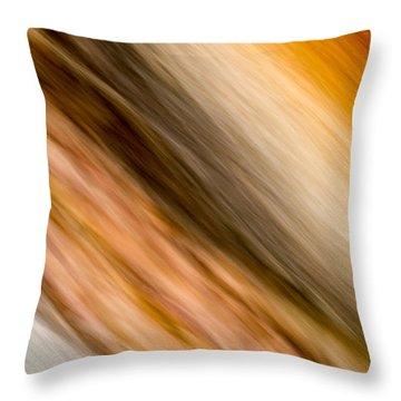 Amber Diagonal Throw Pillow