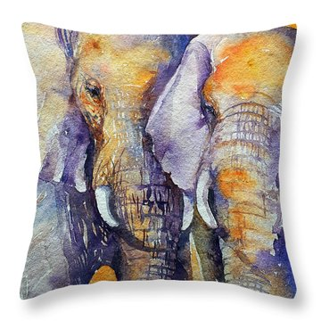 Amber Skies Throw Pillow