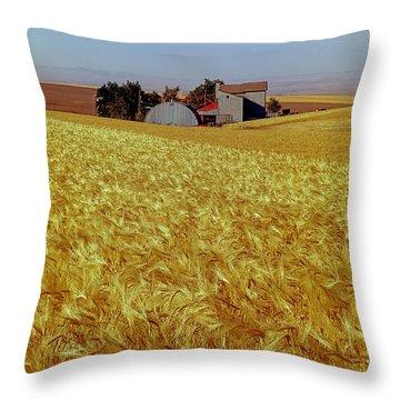 Amber Waves Of Grain - V Throw Pillow