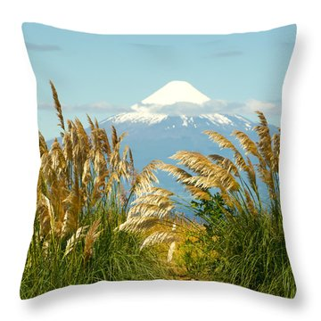 Amber Waves Of Osorno Throw Pillow