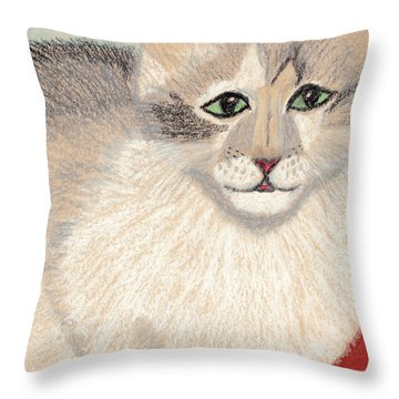 Ambers Shadow Throw Pillow by Jessica Foster