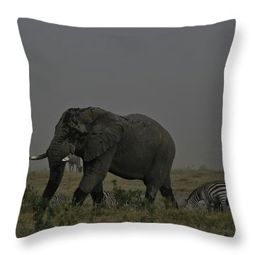 Amboseli Giant Throw Pillow