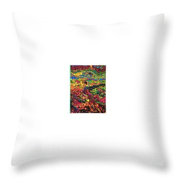 Throw Pillow featuring the drawing American Abstract by Jonathon Hansen