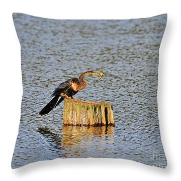 American Anhinga Angler Throw Pillow