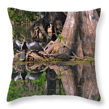 American Anhinga Or Snake-bird Throw Pillow by Christine Till