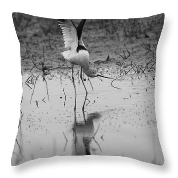 American Avocet Reflection Throw Pillow
