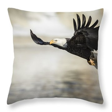 American Bald Eagle 2015-22 Throw Pillow