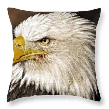 American Bald Eagle 33 Throw Pillow by Marty Koch