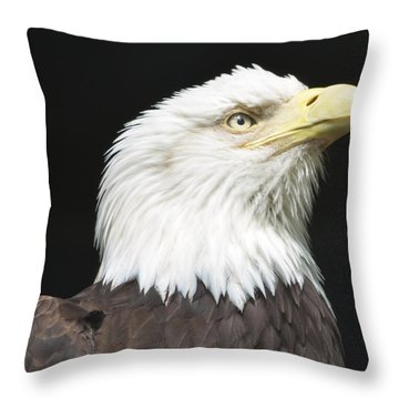 American Bald Eagle Profile Throw Pillow