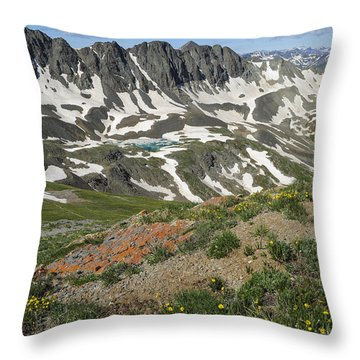 American Basin Throw Pillow