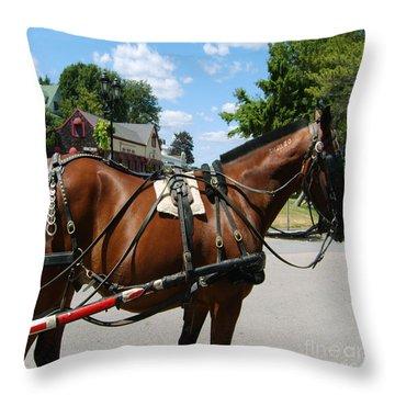 American Bay Quarter Horse Throw Pillow