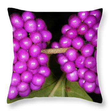 American Beautyberry Throw Pillow by Scott Camazine