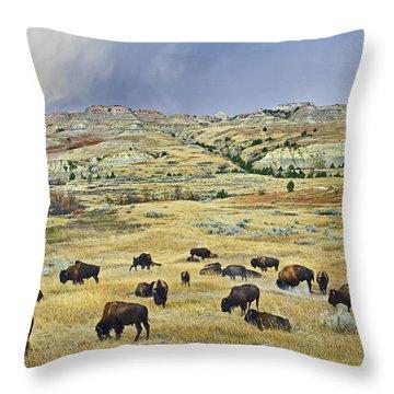 American  Bison Herd Grazing Throw Pillow by Tim Fitzharris