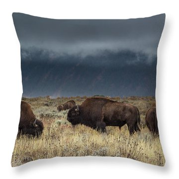 American Bison On The Prairie Throw Pillow