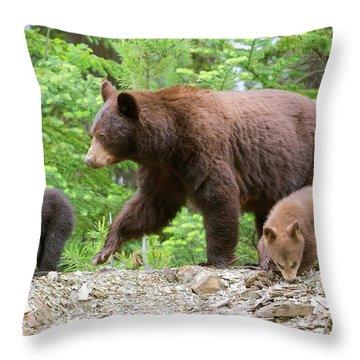 Ursidae Throw Pillows