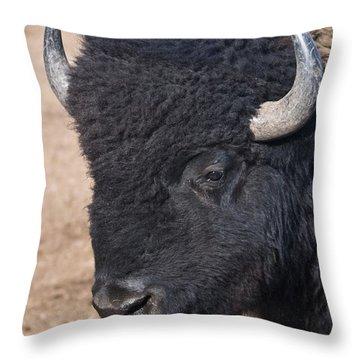 American Buffalo Throw Pillow