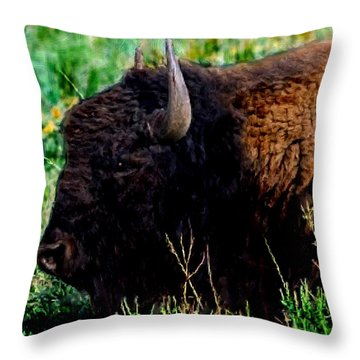 American Buffalo Yellowstone Painting Throw Pillow by Bob and Nadine Johnston