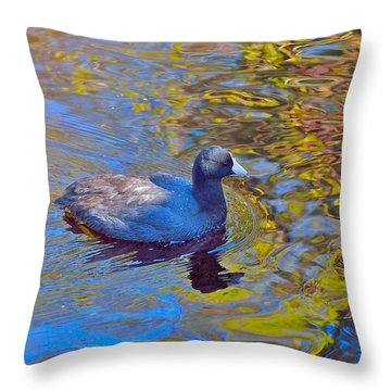American Coot Throw Pillow