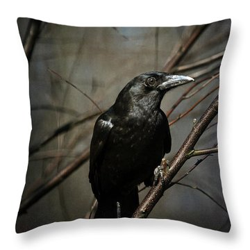 American Crow Throw Pillow