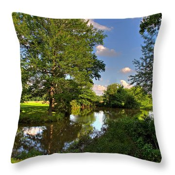 American Farm Pond Throw Pillow