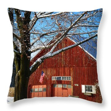 American Flag Red Barn Throw Pillow by Dee Flouton