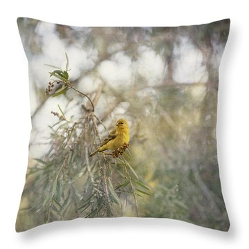 American Goldfinch In Winter Plumage Throw Pillow by Angela A Stanton