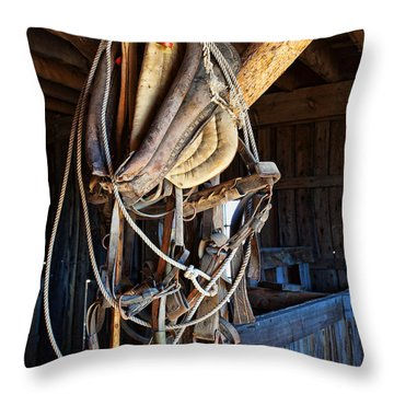 Throw Pillow featuring the photograph American History by Jim Garrison