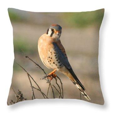 American Kestrel Throw Pillow by Bob and Jan Shriner