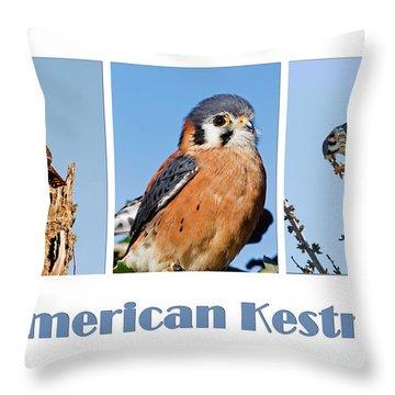 Pelican Island National Wildlife Refuge Throw Pillows