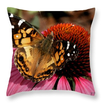 Throw Pillow featuring the photograph American Lady  by James C Thomas
