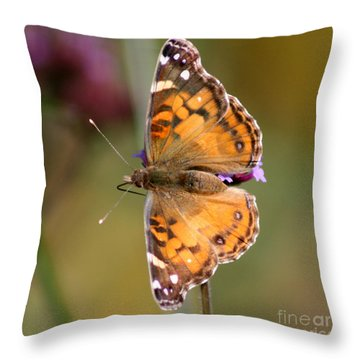 American Lady Butterfly Throw Pillow by Karen Adams