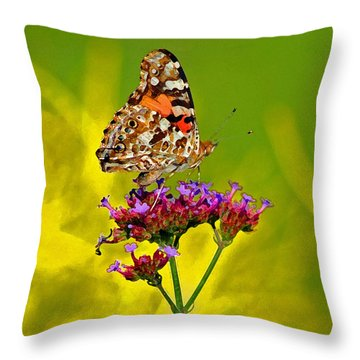 American Painted Lady Butterfly Throw Pillow by Karen Adams