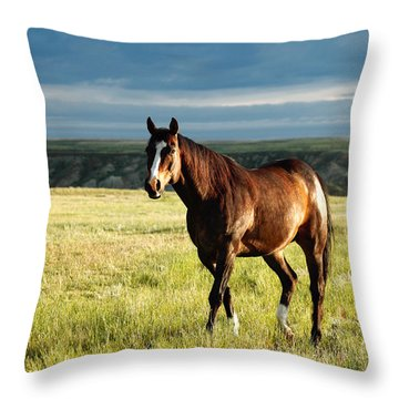 American Quarter Horse Throw Pillow