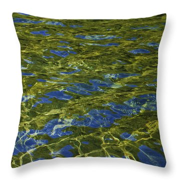 American River Abstract 2 Throw Pillow by Sherri Meyer