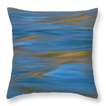 Throw Pillow featuring the photograph American River Abstract by Sherri Meyer
