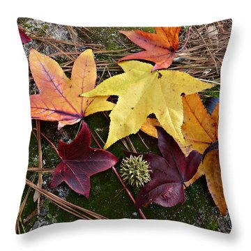 Throw Pillow featuring the photograph American Sweetgum Autumn Display by William Tanneberger