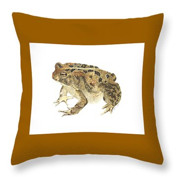 American Toad Throw Pillow by Cindy Hitchcock