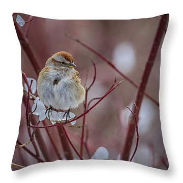 American Tree Sparrow 2 Throw Pillow