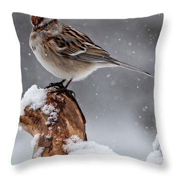 American Tree Sparrow In Snow Throw Pillow