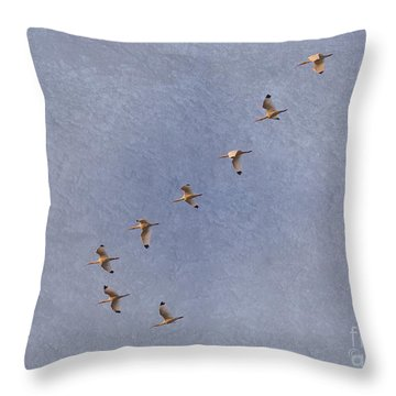 American White Ibis Flock Homeward Bound Throw Pillow by D Wallace