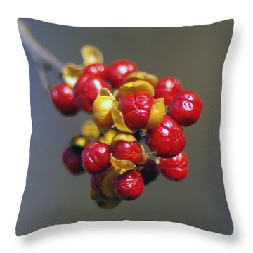 American Winterberry Throw Pillow by Brian Wallace