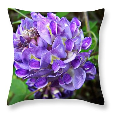 American Wisteria Throw Pillow by William Tanneberger