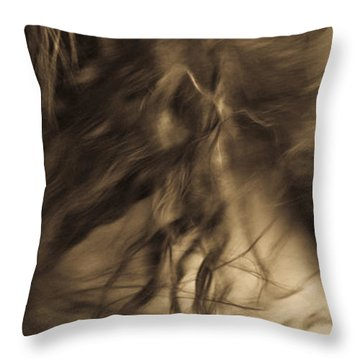 Americano 15 Throw Pillow