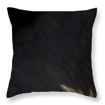 Americano 18 Throw Pillow