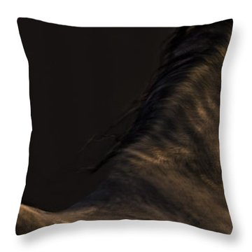 Americano 19 Throw Pillow