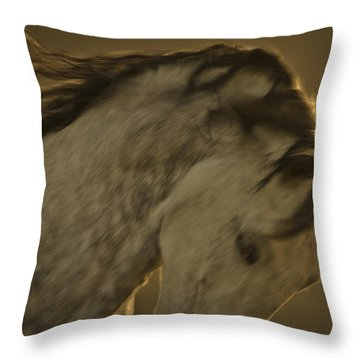 Americano 2 Throw Pillow